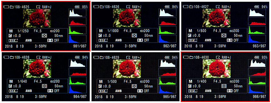 In-camera histograms for shots 4625 - 4630