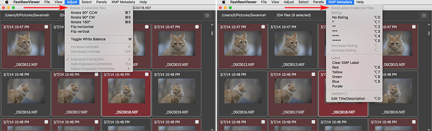 FastRawViewer 1.4.4 Menus for Batch Adjust and XMP Metadata
