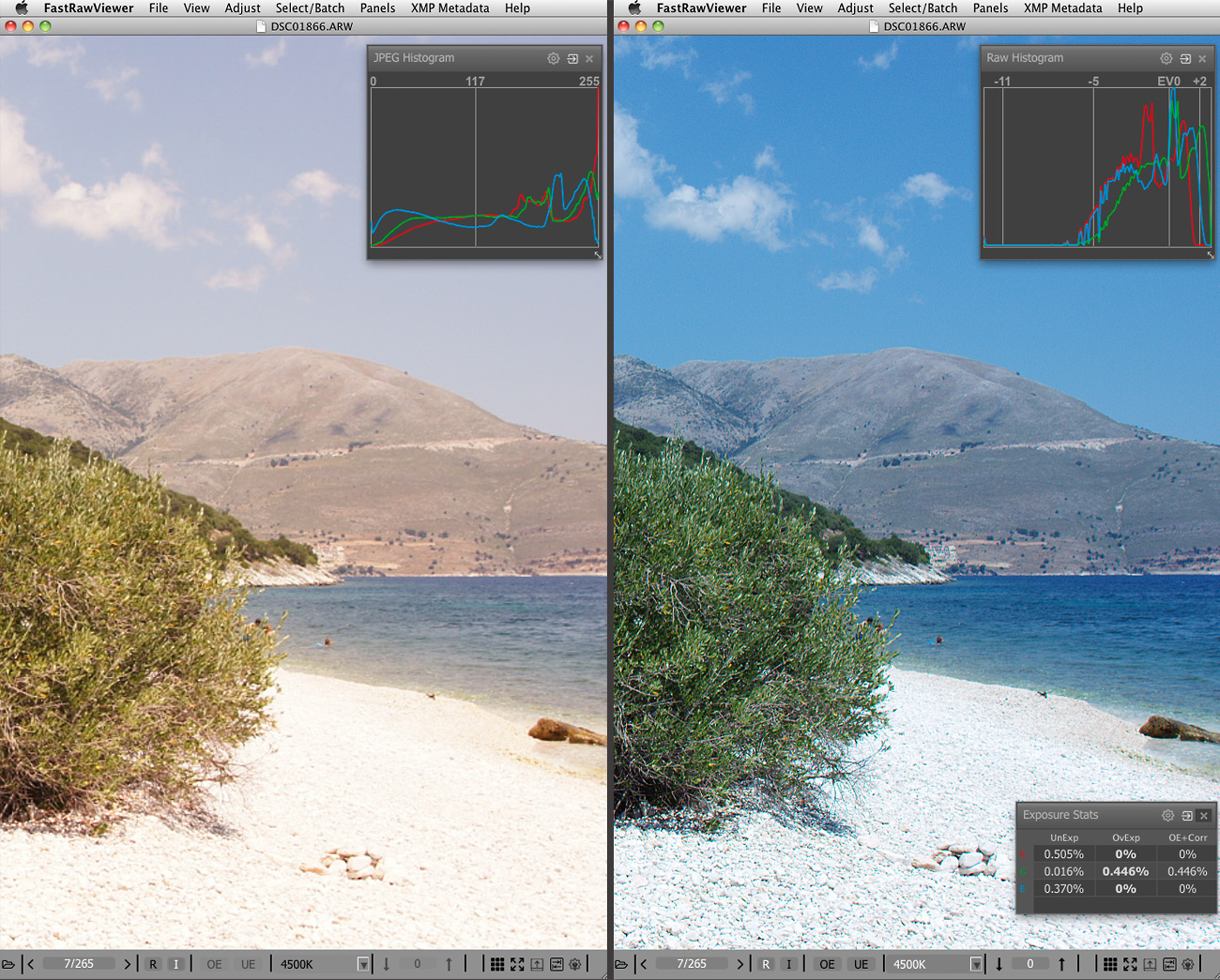 how to convert raw images into jpeg on mac