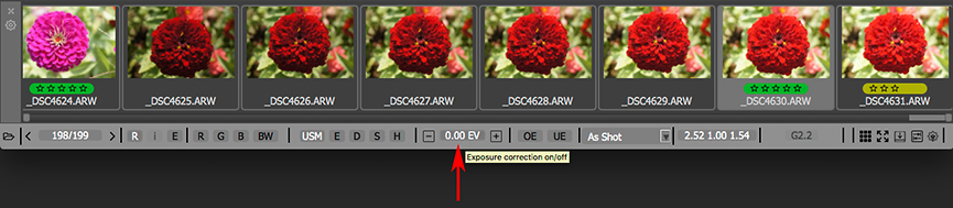 FastRawViewer. Bottom Bar. Exposure correction On/Off