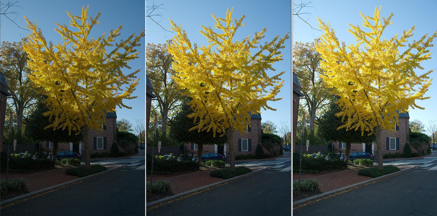 bracketed-exposures-photo-editing-sample
