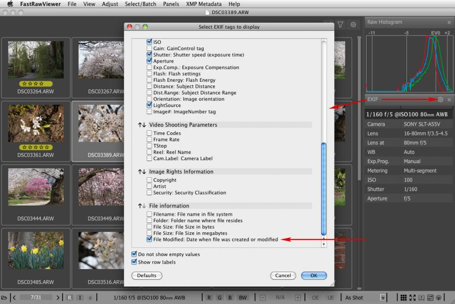 FastRawViewer 1.3.9. EXIF. File modified date