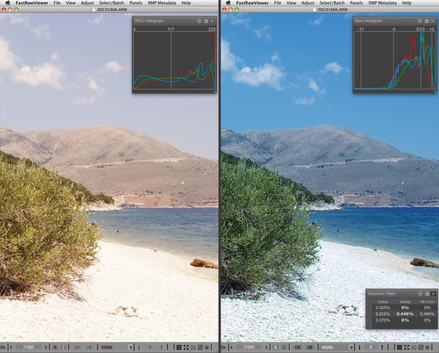 FastRawViewer High Dynamic Range Scene RAW and Embedded JPEG View Compare