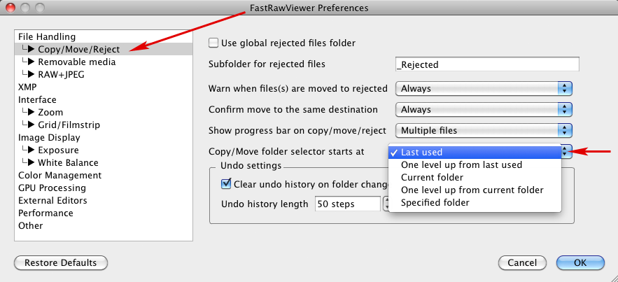 FastRawViewer 1.3.8. Copy/Move folder selector start at
