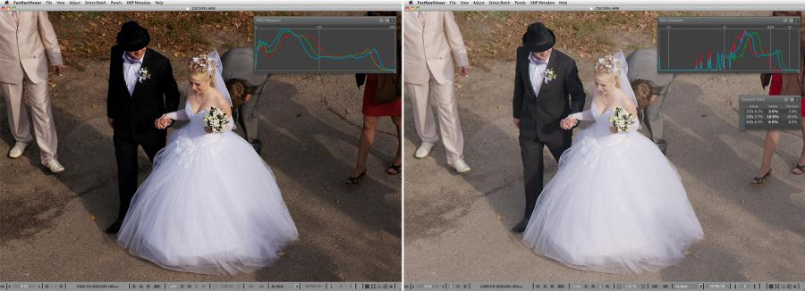FastRawViewer. Small village wedding. Shadow Boost