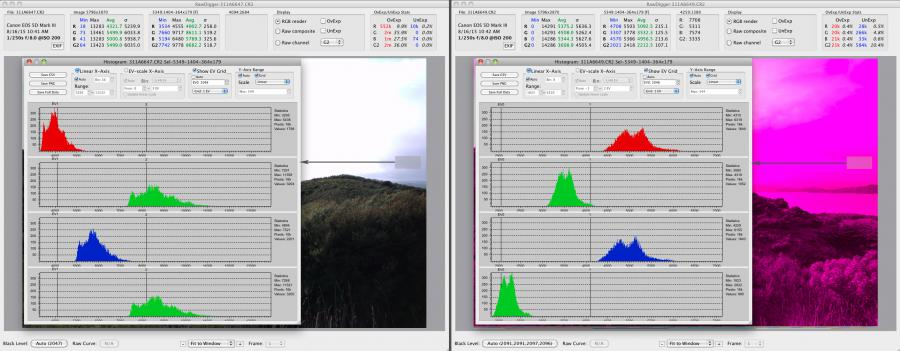 RawDigger. Raw histograms of the samples on the damaged and not damaged shots