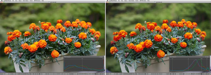 FastRawViewer. Marigold. False clipping in highlights