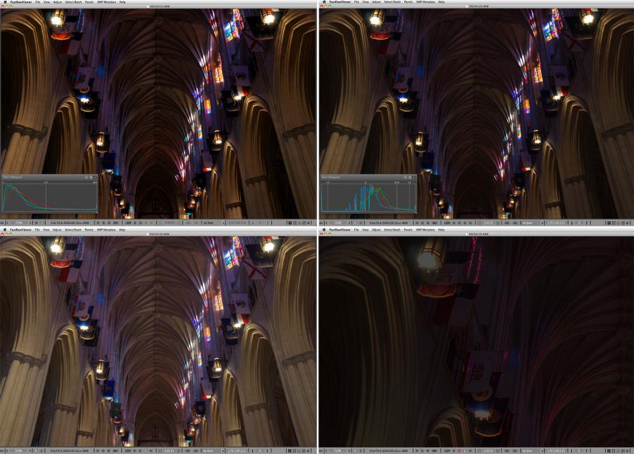 FastRawViewer. Inside of the National Cathedral. Shadow Boost and Focus Peaking