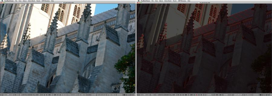 FastRawViewer. Walls of the National Cathedral. Focus Peaking