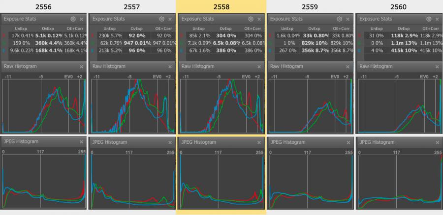 FastRawViewer. Series 2556-2560. Raw and JPEG histograms and raw exposure statistics