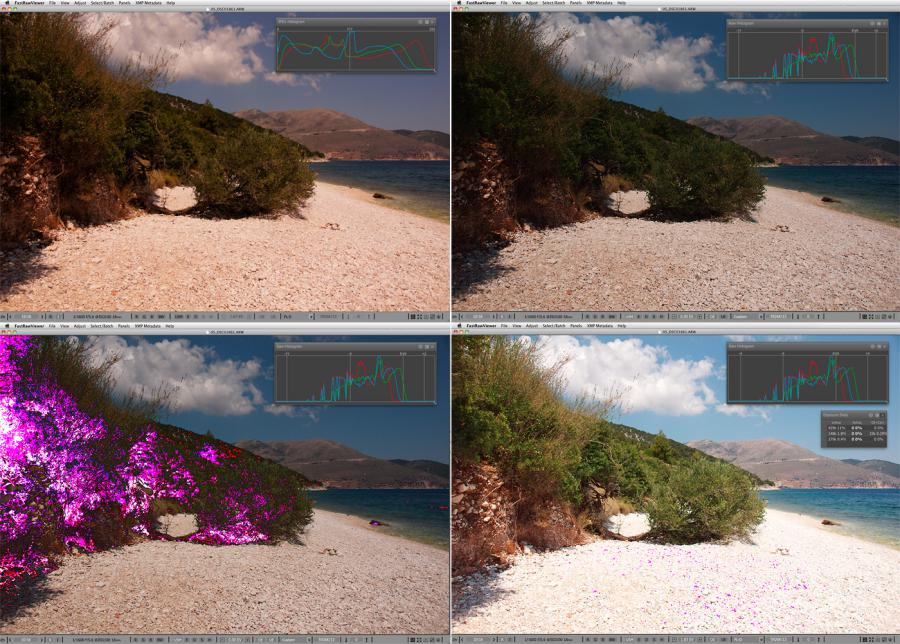 FastRawViewer. Beach at noon. Hottest exposure for JPEG, but Raw is underexposed