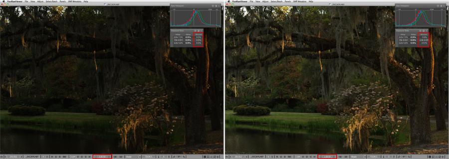 FastRawViewer. BrookGreen Gardens. Raw shot