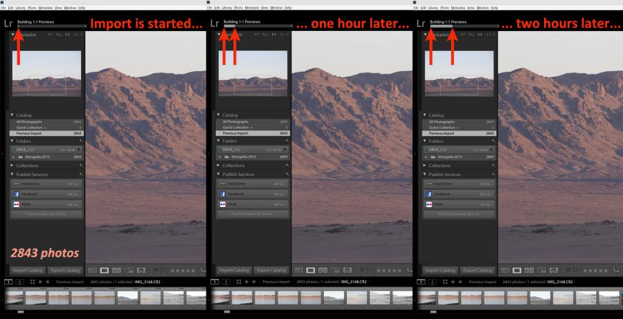 First stage of culling with a raw converter - import all images
